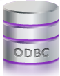 The ctrack IVMS System can have ODBC connectivity